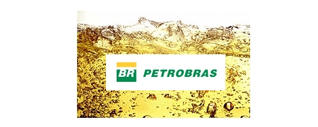 INVESTIMENTOS ALTERNATIVOS - PETROBRÁS Resultados do 4º trimestre/2012